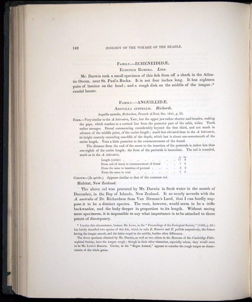 Image of Darwin-F8.3-1838-00142