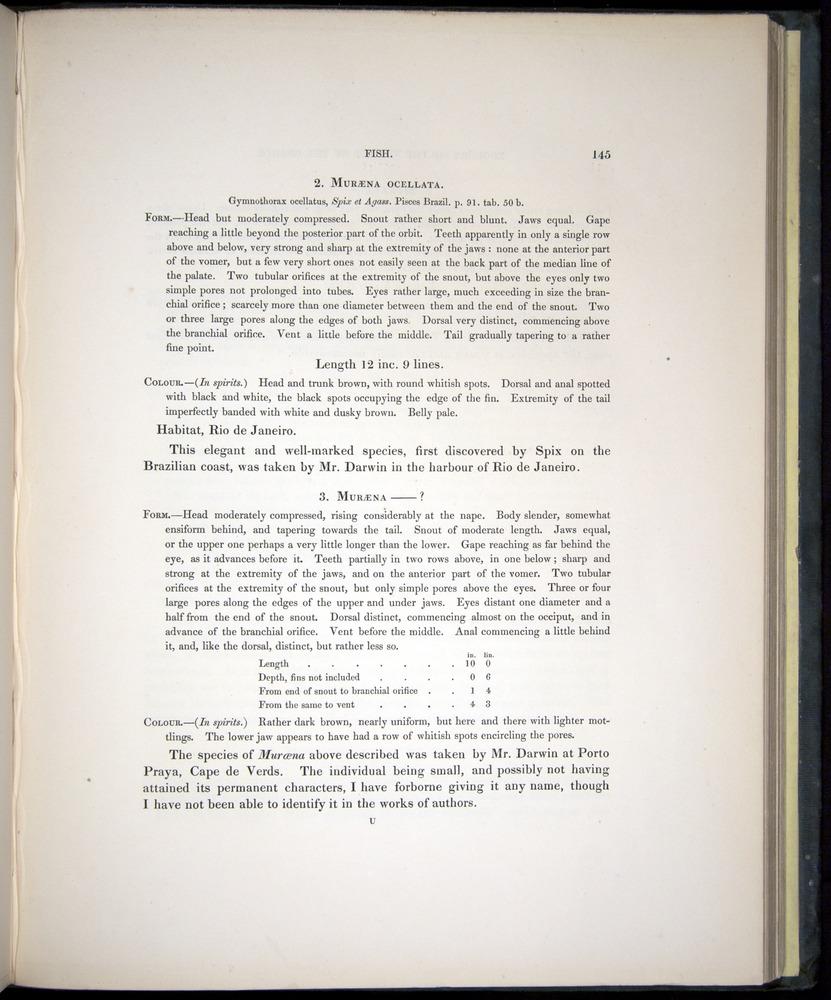 Image of Darwin-F8.3-1838-00145