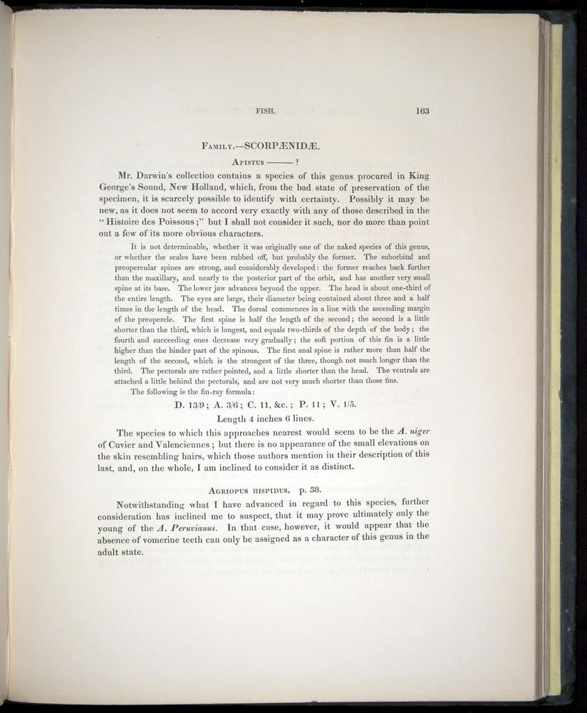 Image of Darwin-F8.3-1838-00163