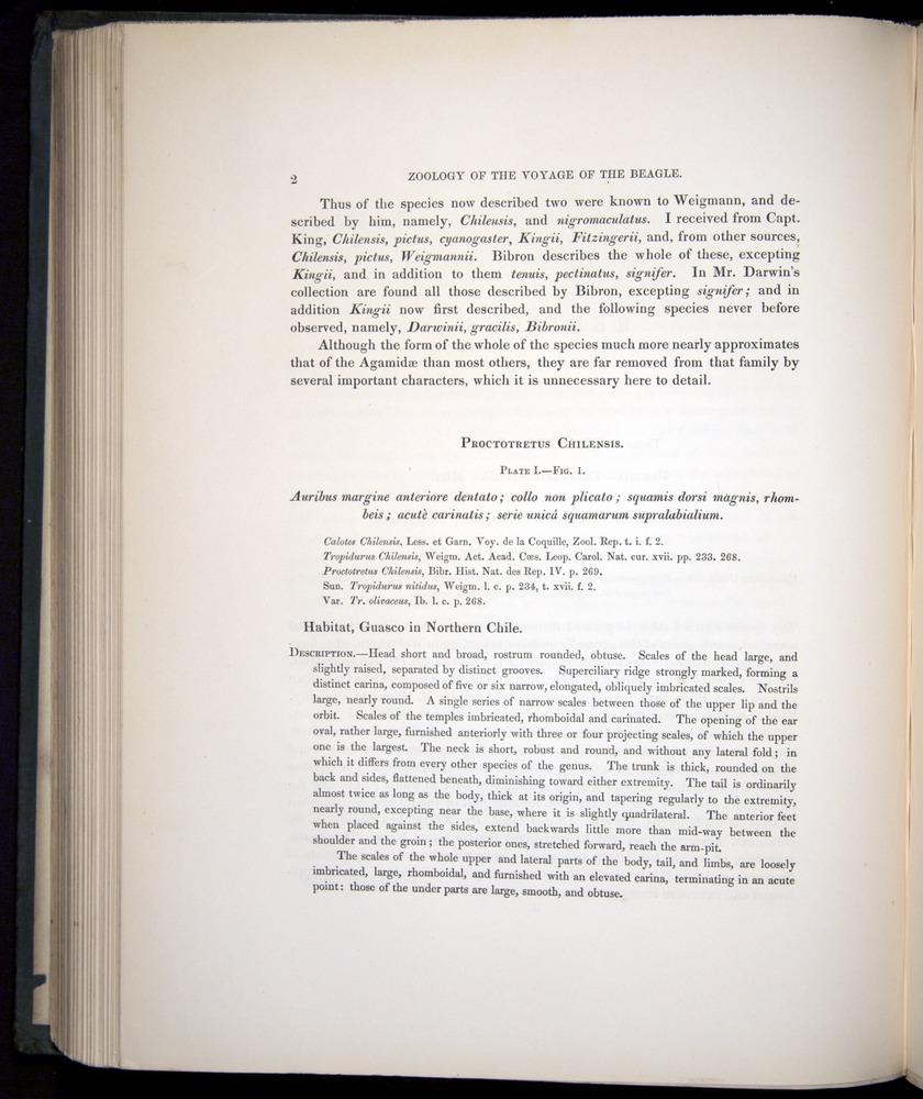 Image of Darwin-F8.3-1838-b00002