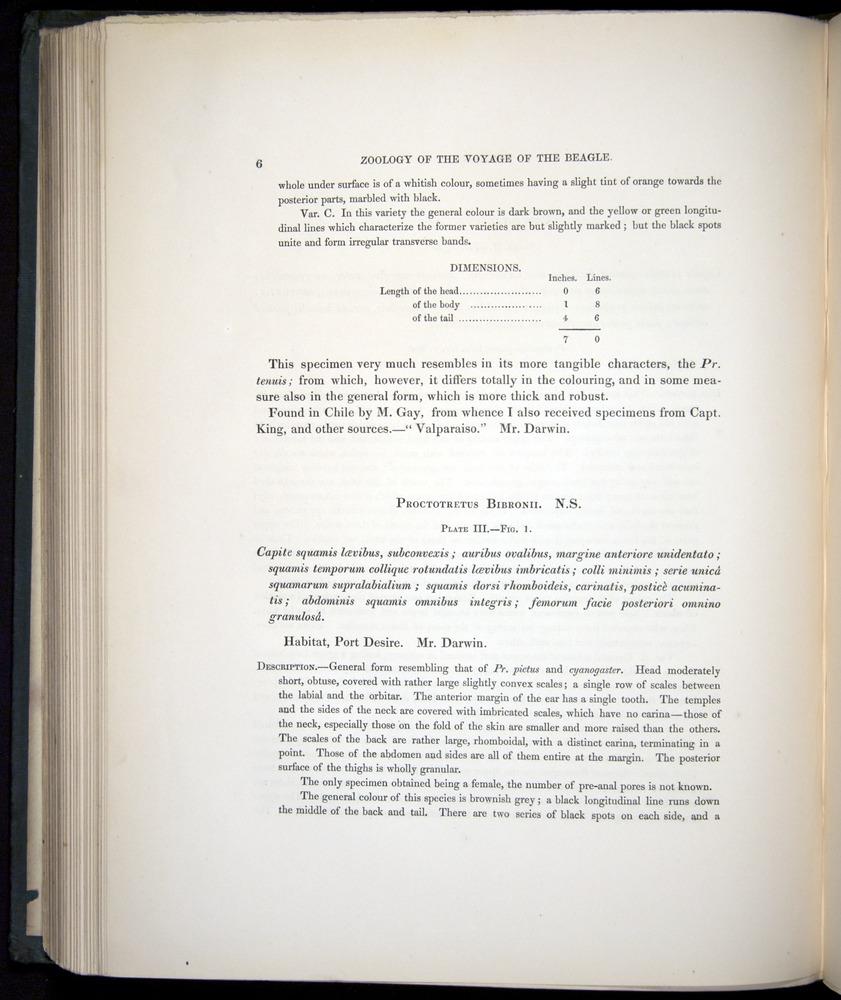 Image of Darwin-F8.3-1838-b00006