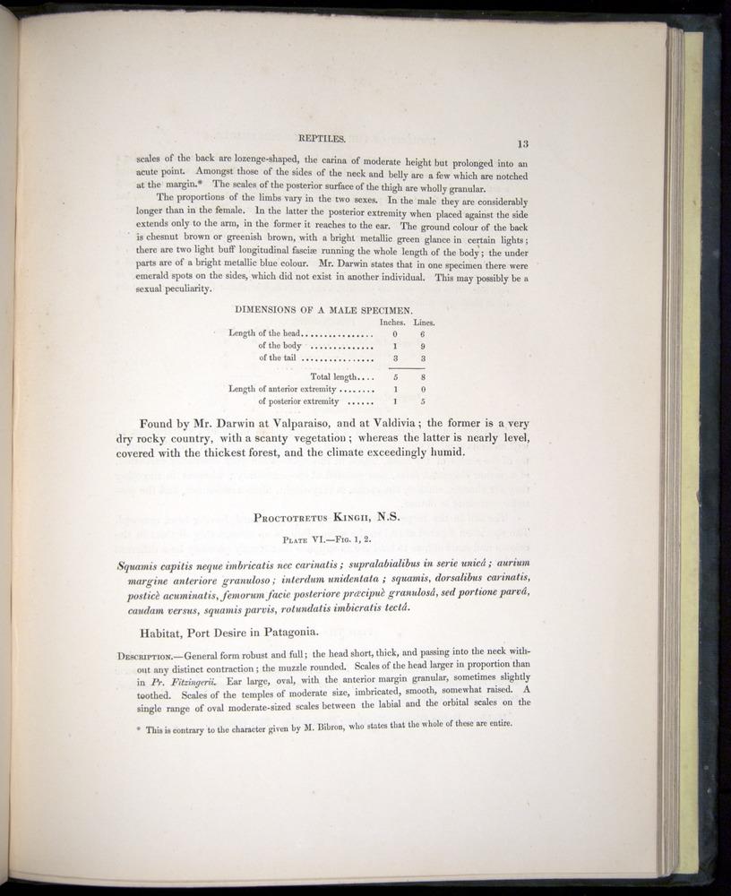 Image of Darwin-F8.3-1838-b00013