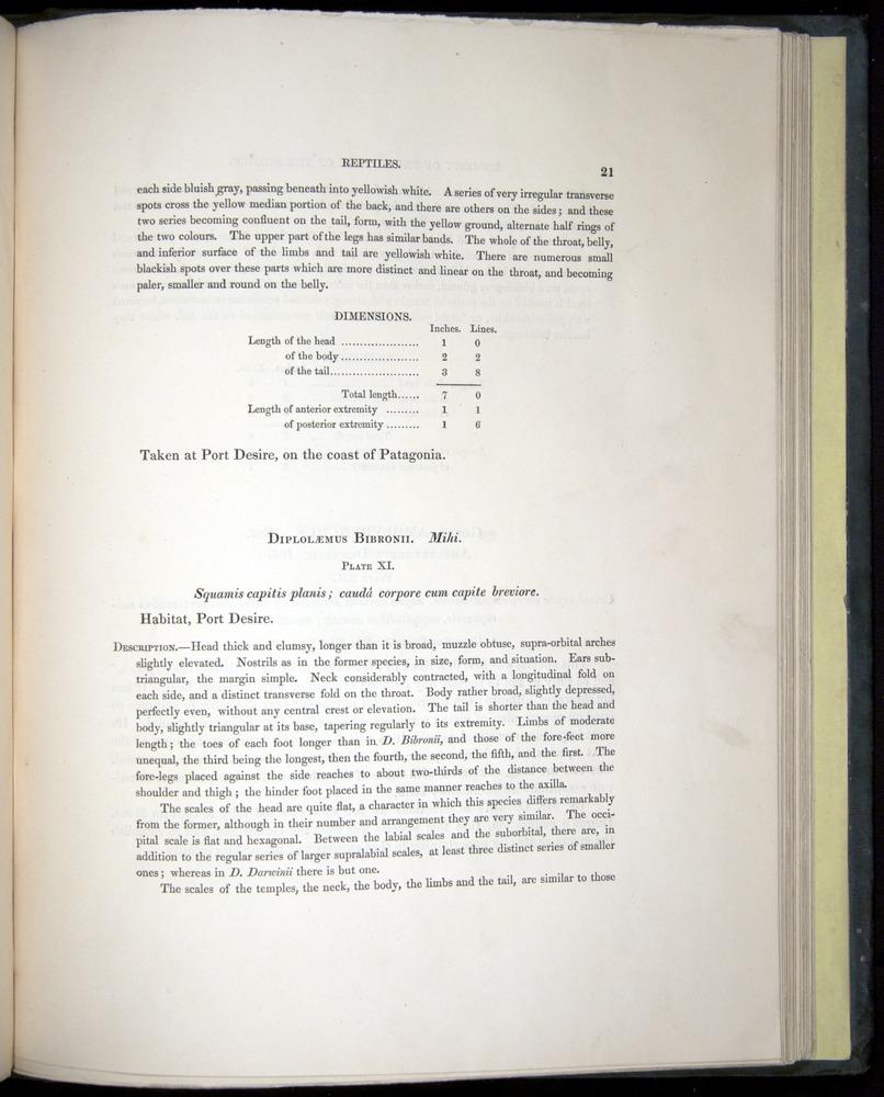 Image of Darwin-F8.3-1838-b00021