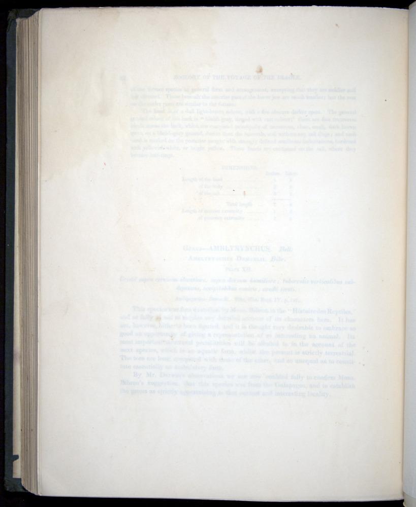Image of Darwin-F8.3-1838-b00022-bf12