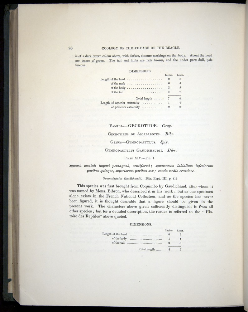 Image of Darwin-F8.3-1838-b00026