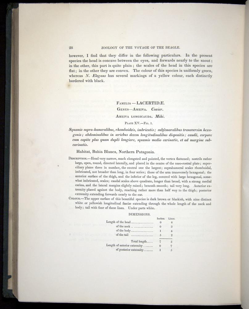Image of Darwin-F8.3-1838-b00028