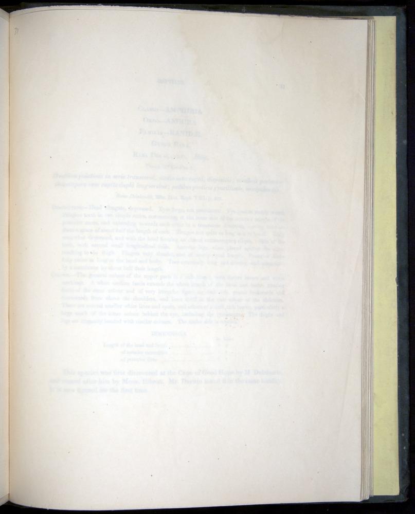 Image of Darwin-F8.3-1838-b00030-yf16