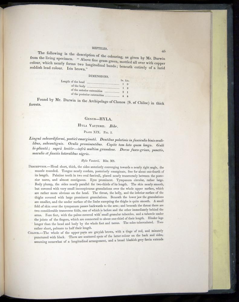 Image of Darwin-F8.3-1838-b00045
