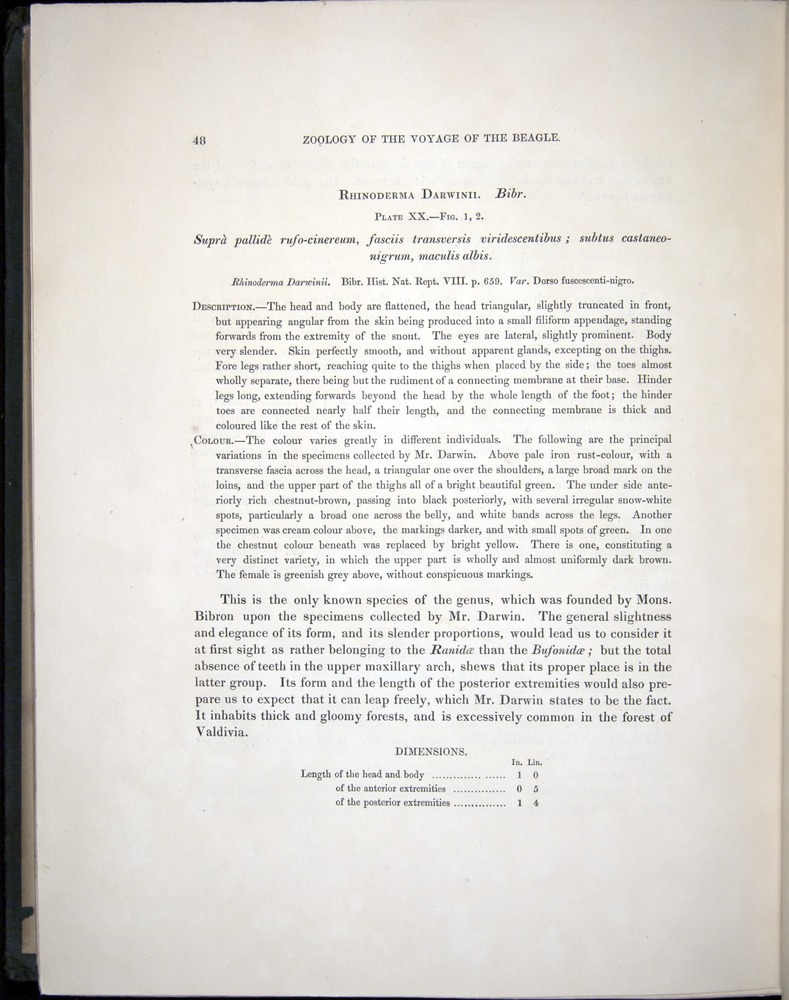 Image of Darwin-F8.3-1838-b00048