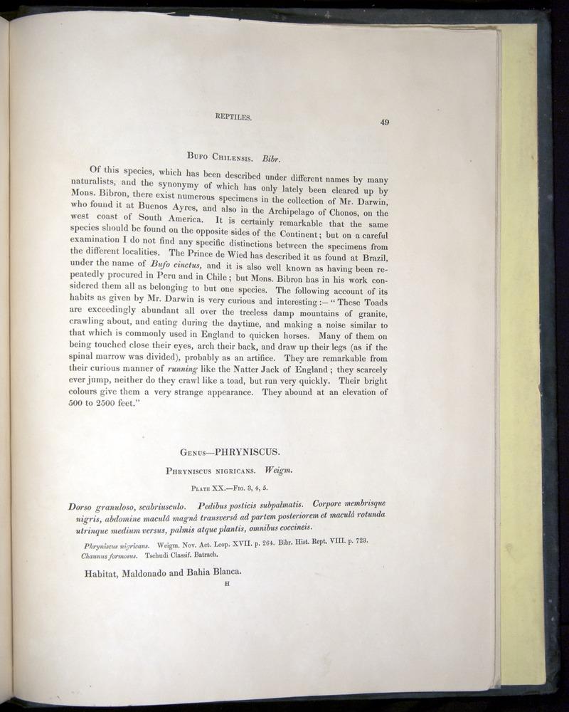 Image of Darwin-F8.3-1838-b00049