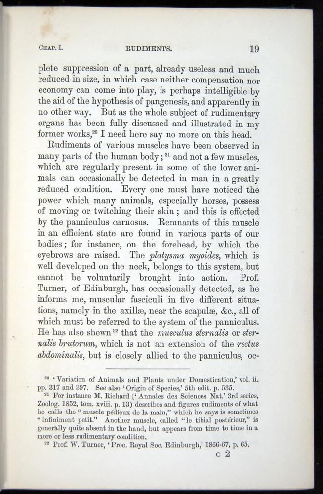 Image of Darwin-F937.1-1871-019