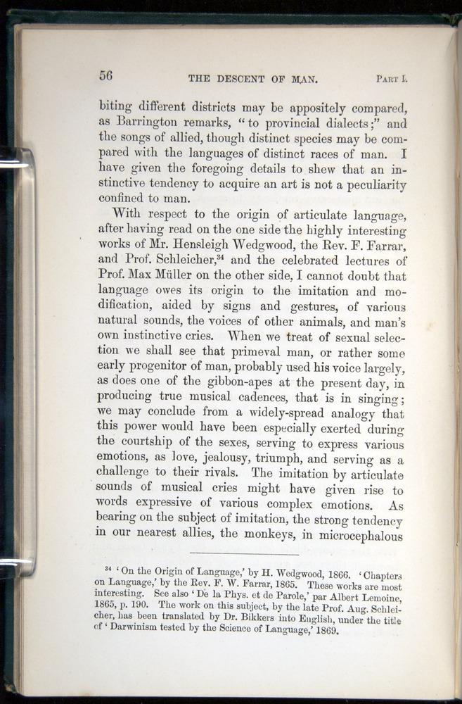 Image of Darwin-F937.1-1871-056