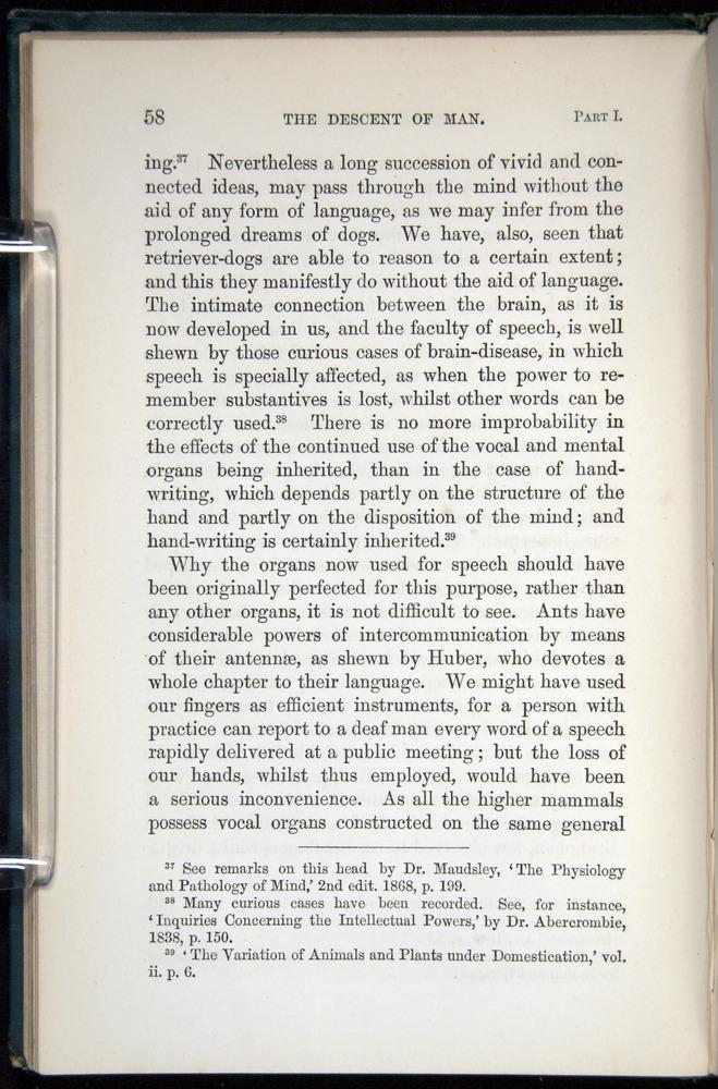 Image of Darwin-F937.1-1871-058