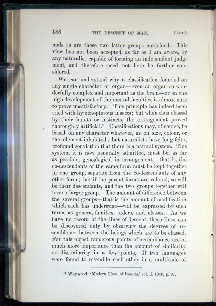 Image of Darwin-F937.1-1871-188