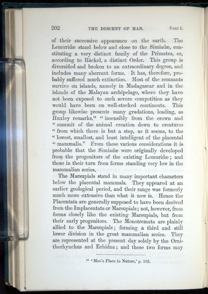 Image of Darwin-F937.1-1871-202