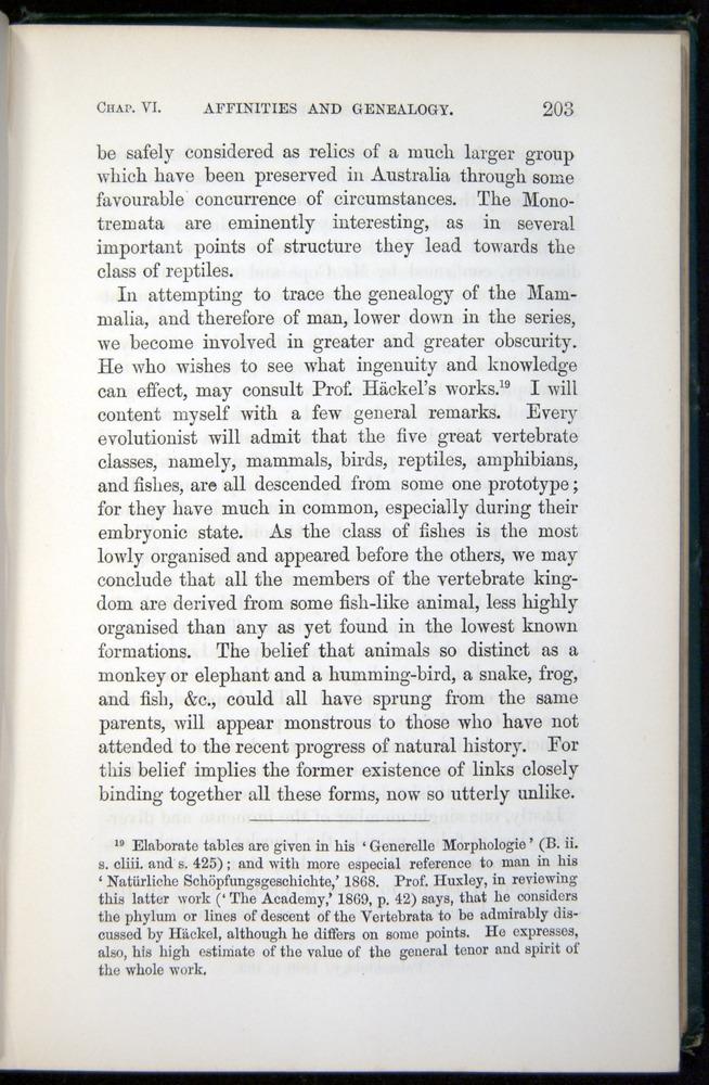 Image of Darwin-F937.1-1871-203