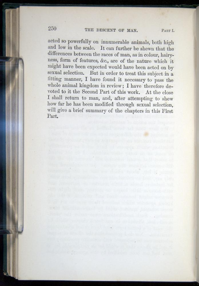 Image of Darwin-F937.1-1871-250