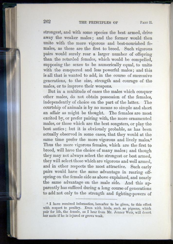 Image of Darwin-F937.1-1871-262
