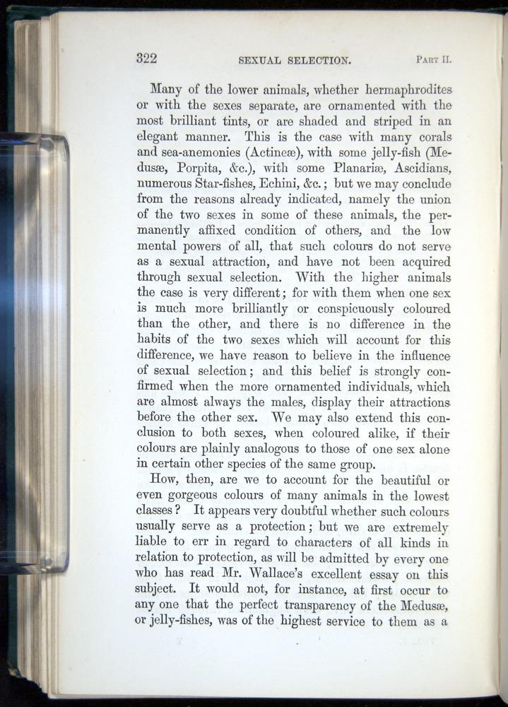 Image of Darwin-F937.1-1871-322