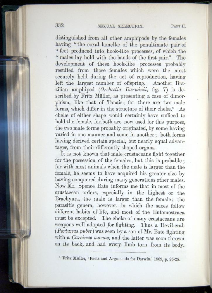 Image of Darwin-F937.1-1871-332