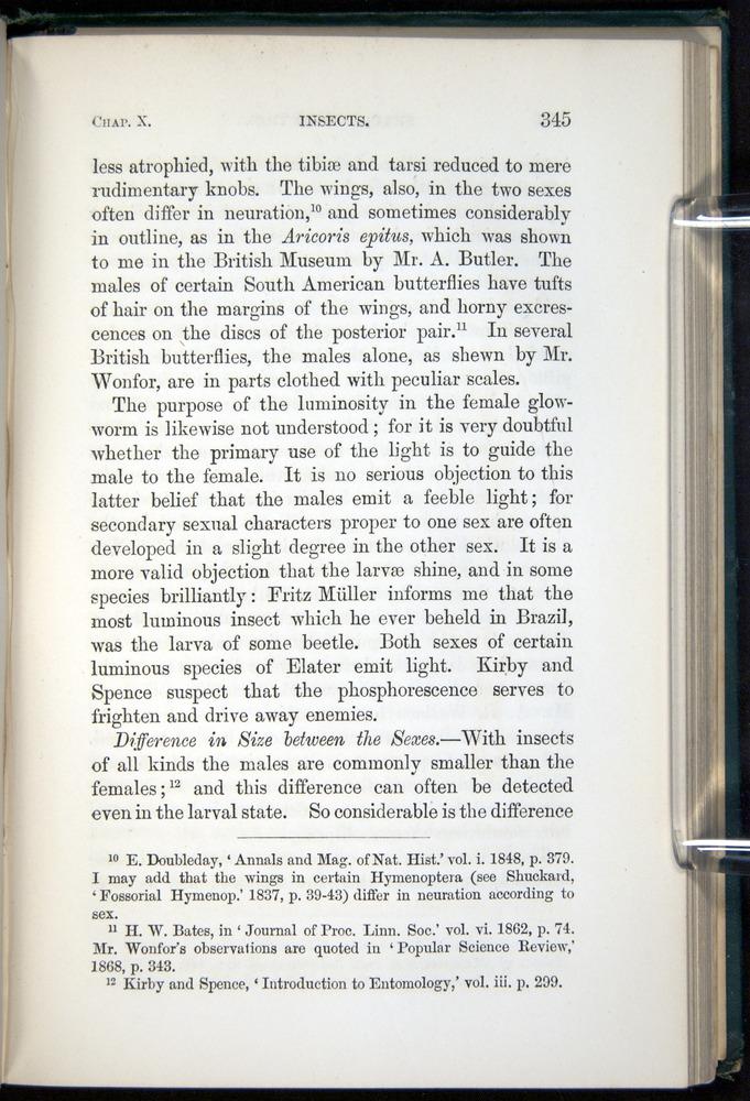 Image of Darwin-F937.1-1871-345