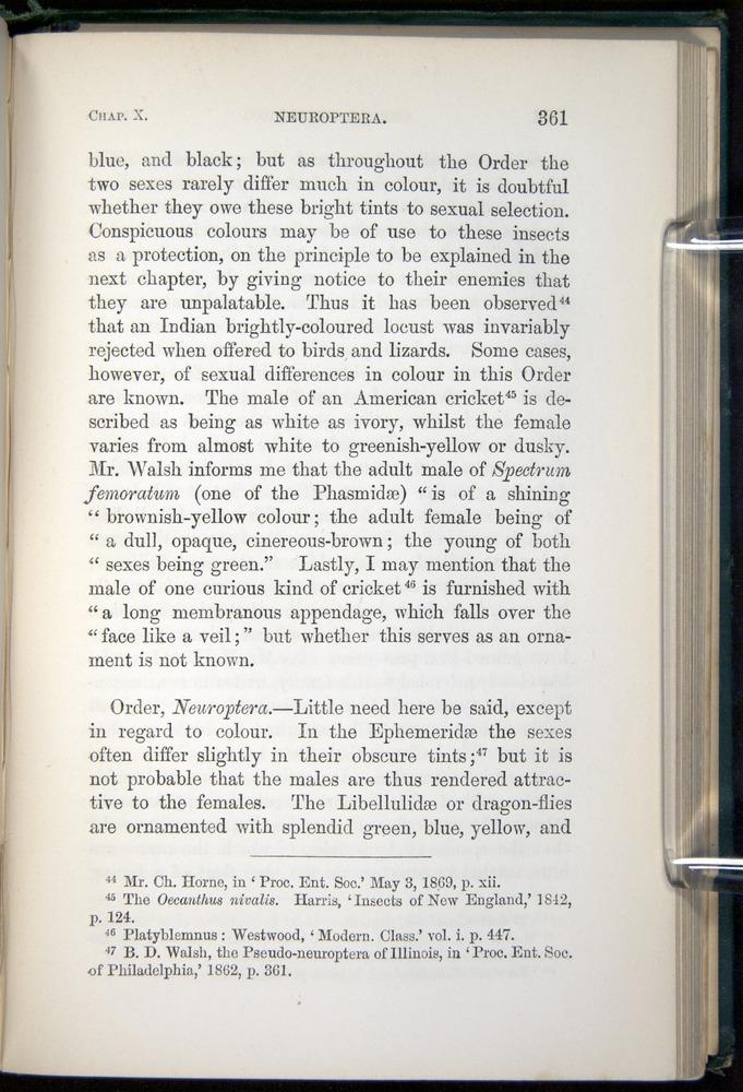 Image of Darwin-F937.1-1871-361