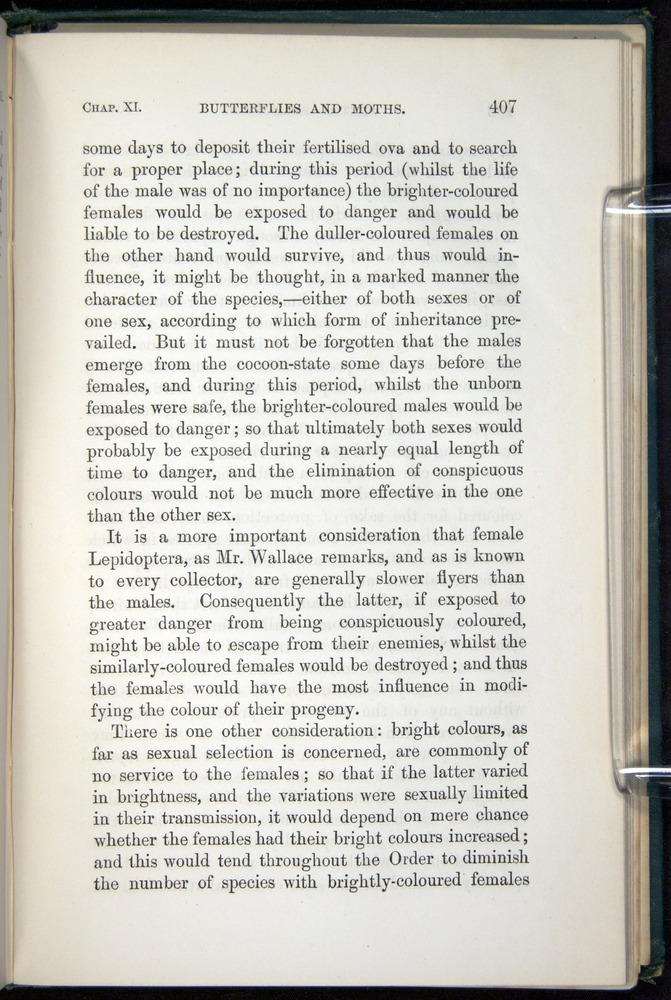 Image of Darwin-F937.1-1871-407