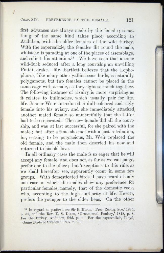 Image of Darwin-F937.2-1871-121