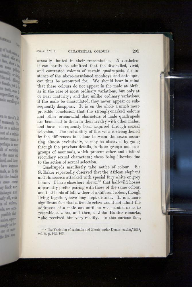 Image of Darwin-F937.2-1871-295