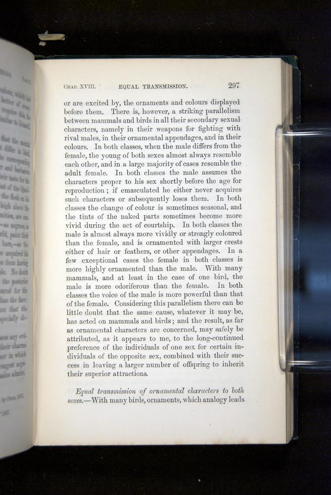 Image of Darwin-F937.2-1871-297