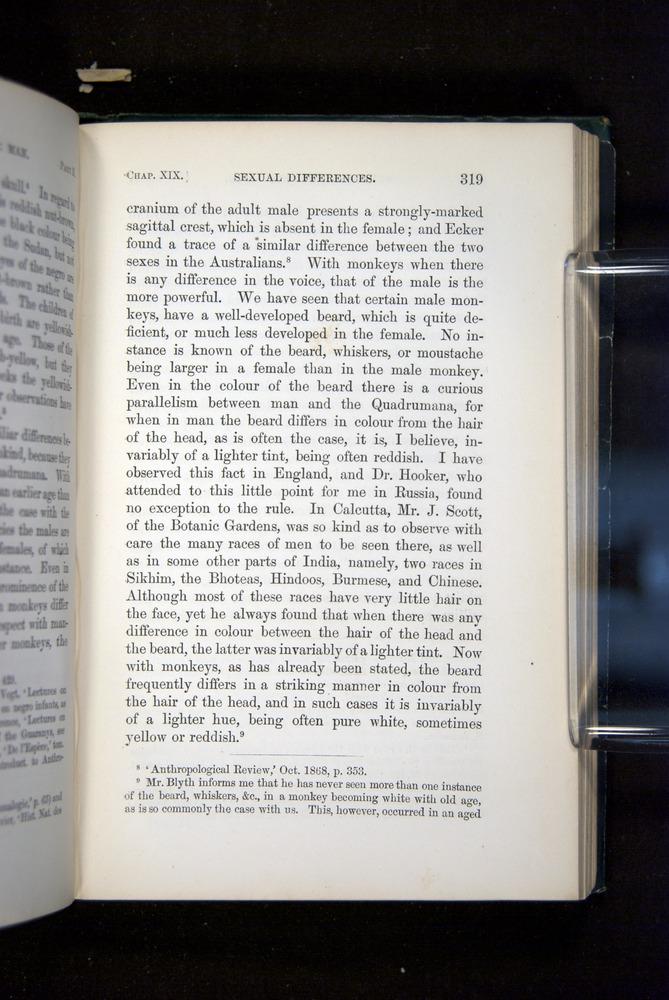 Image of Darwin-F937.2-1871-319