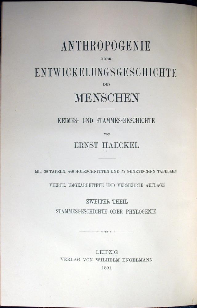 Image of Haeckel-1891-tp-1