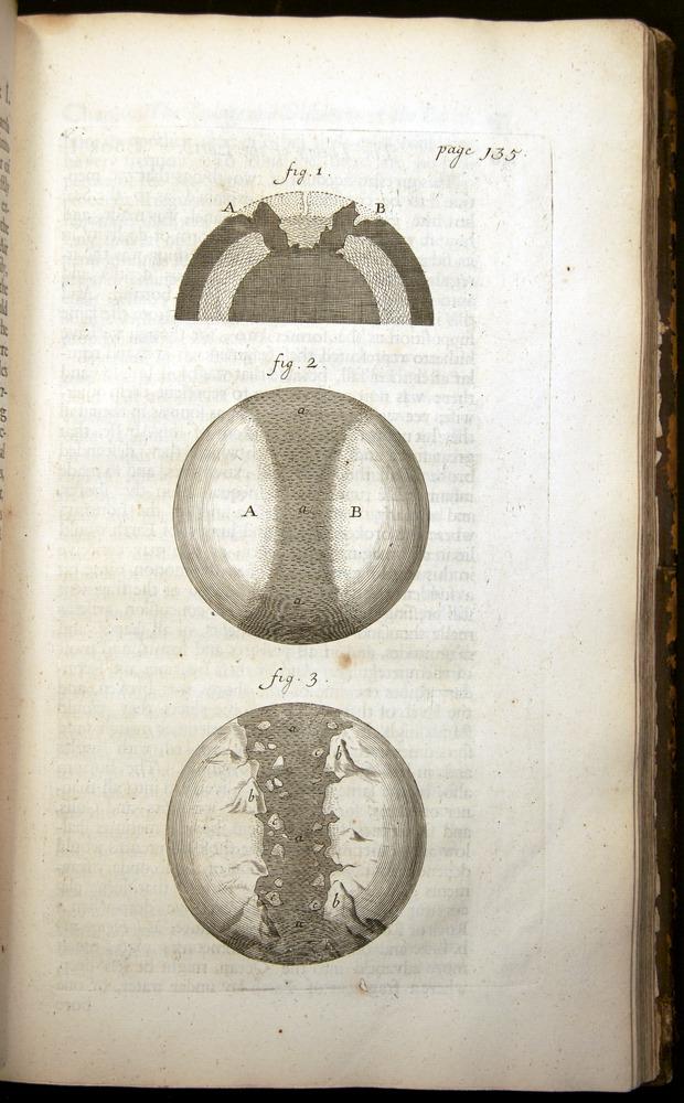 Image of Burnet-1684-135