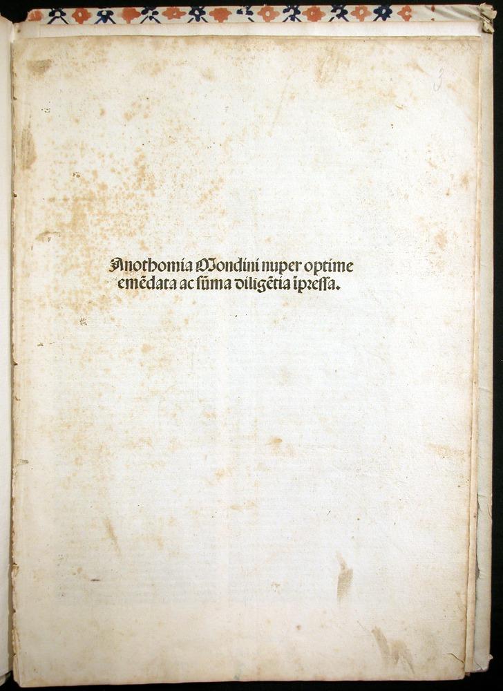 Image of MondinoDeiLuzzi-1507-000-tp
