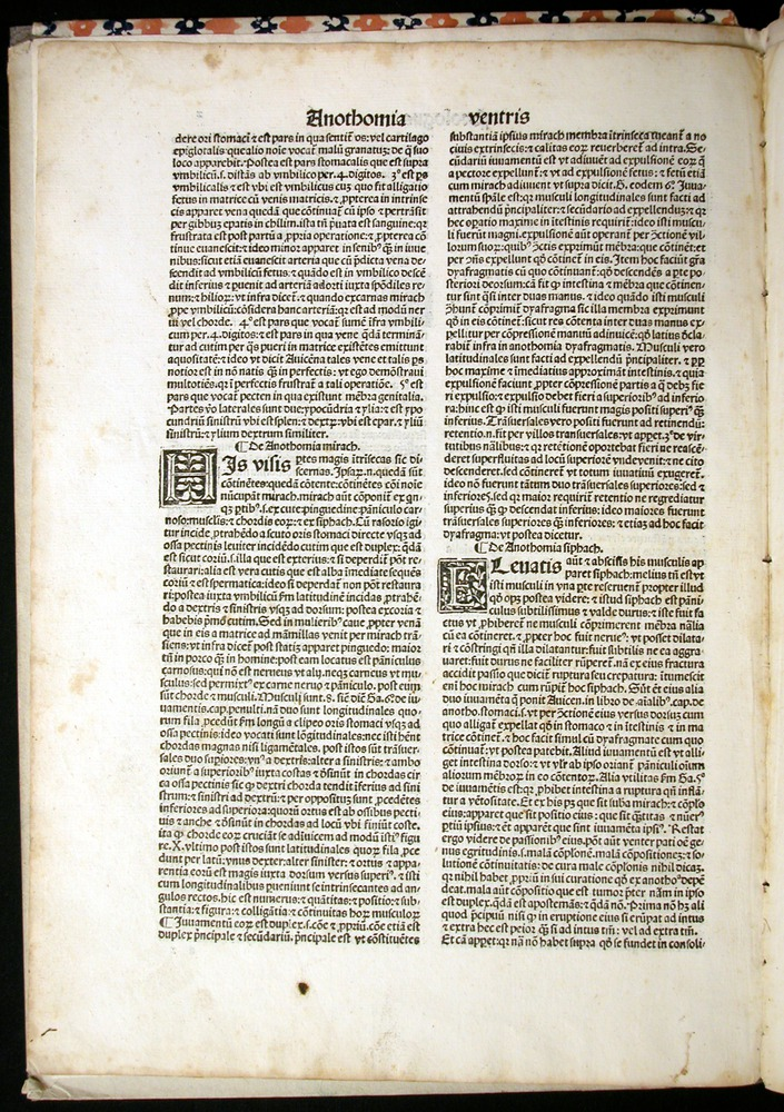 Image of MondinoDeiLuzzi-1507-002v