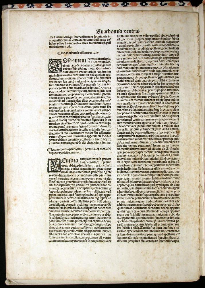 Image of MondinoDeiLuzzi-1507-007v