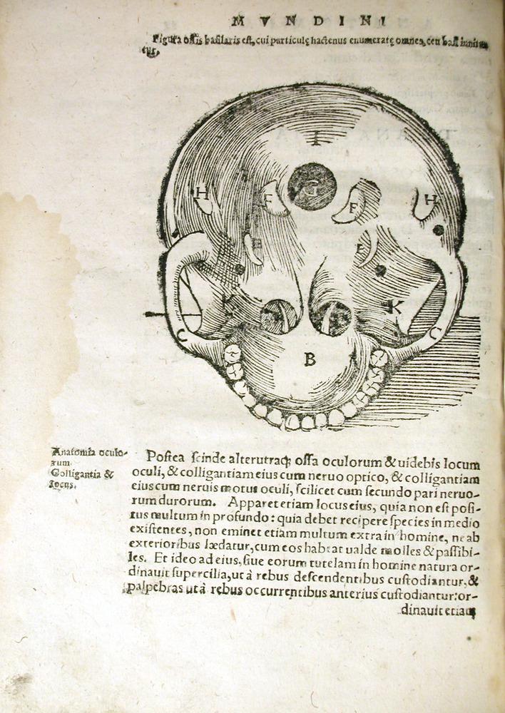 Image of MondinoDeiLuzzi-1541-q1v