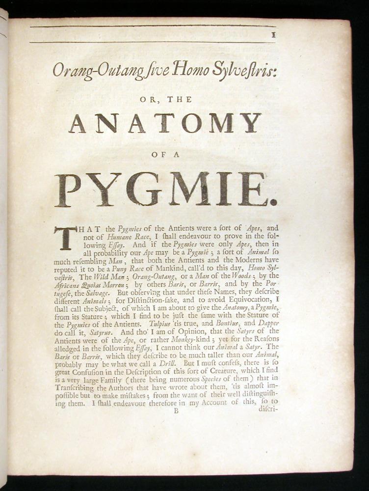 Image of Tyson-1751-001