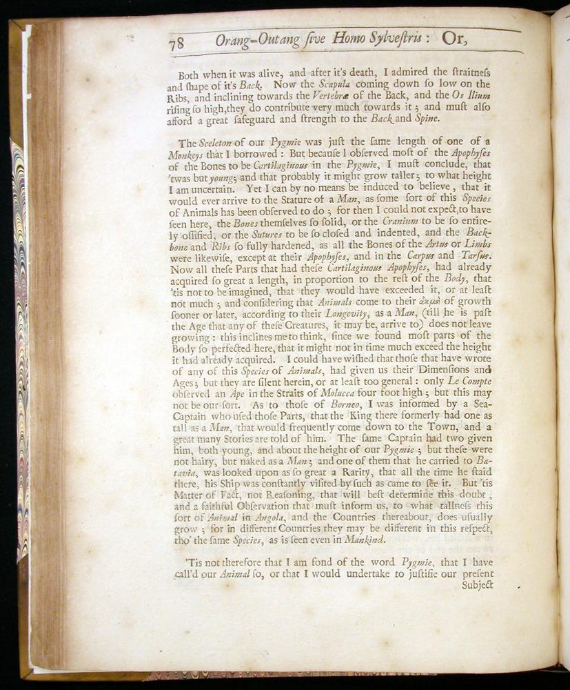 Image of Tyson-1751-078