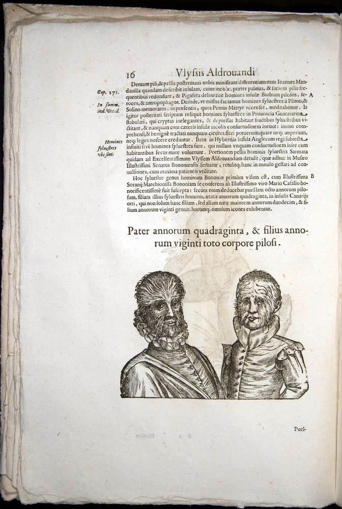 Image of Aldrovandi-1570-0016