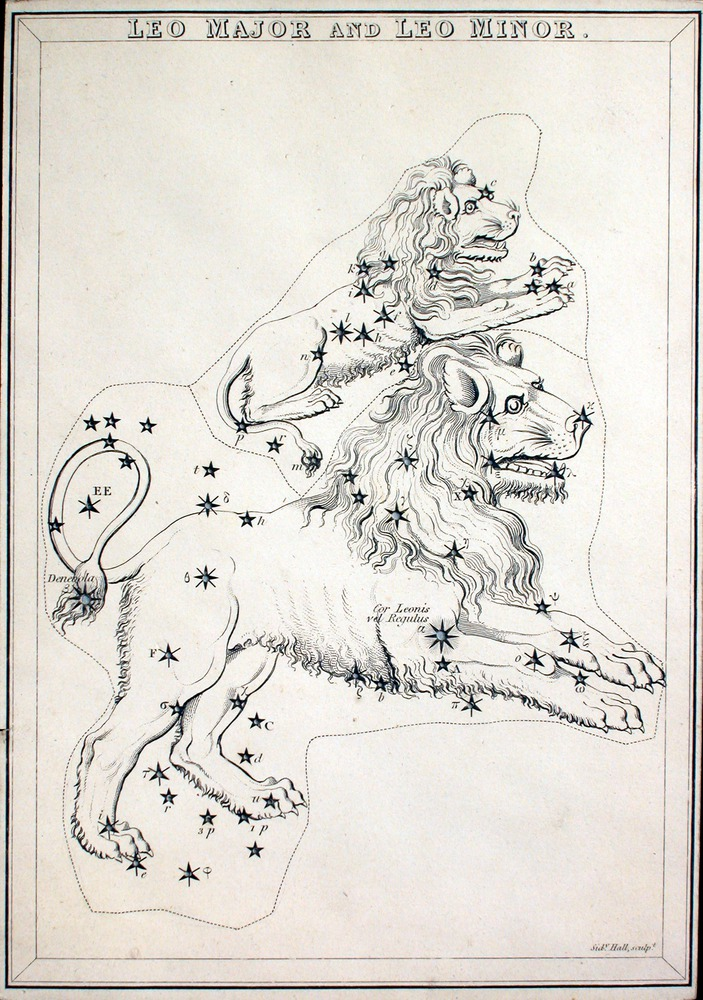 Image of Aspin-1825-Leo