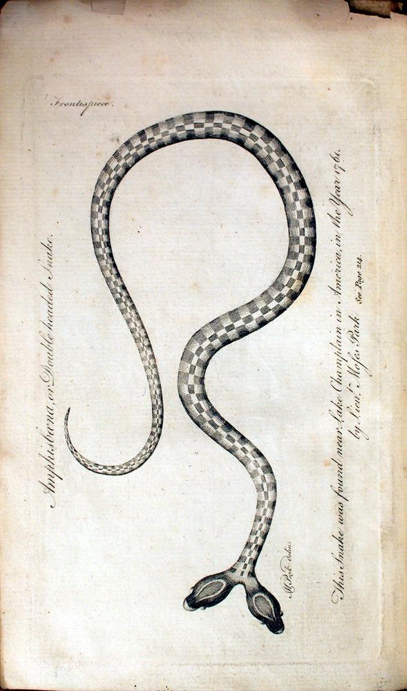 Image of Bancroft-1769-000fp