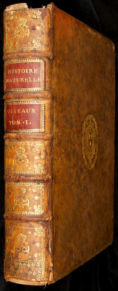 Image of Buffon-1770-v16-000-book