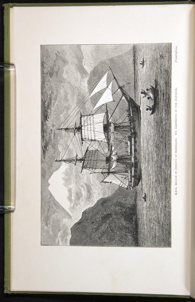 Image of Darwin-F64-1890-000-fpv
