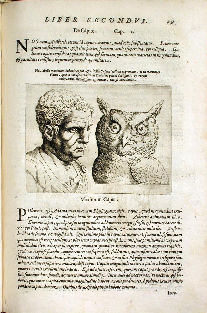 Image of DellaPorta-1586-29