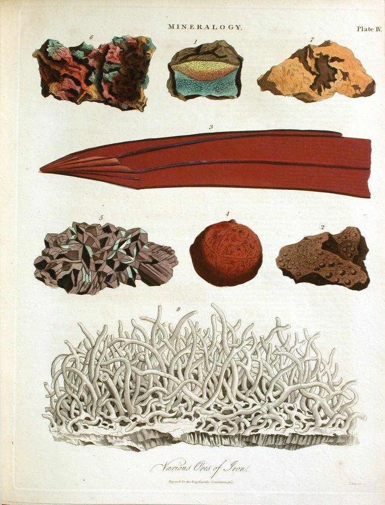 Image of Jameson-1813-88-pl4