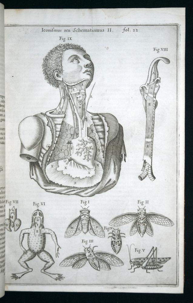 Image of Kircher-1650-v1-00022-folio