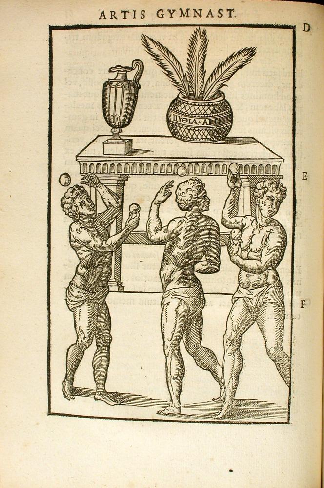 Image of Mercurialis-1577-61v