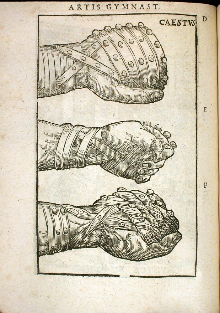 Image of Mercurialis-1577-74v