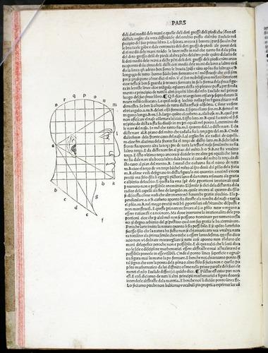 Image of Pacioli-1509-b25r